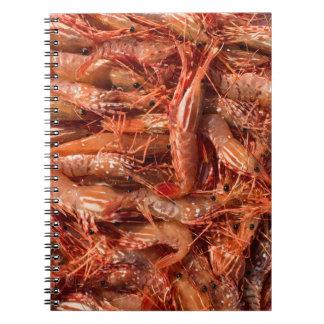 Caderno Espiral Todo o camarão e nenhum cérebro