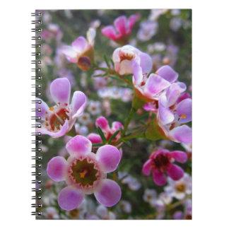 Caderno/jornal pessoal - o manuka cor-de-rosa flor caderno