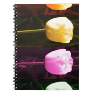Cadernos Espiral Da TULIPA mostra 2013 de flor