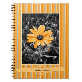 Cadernos Espiral Fotografia da margarida africana do flash do