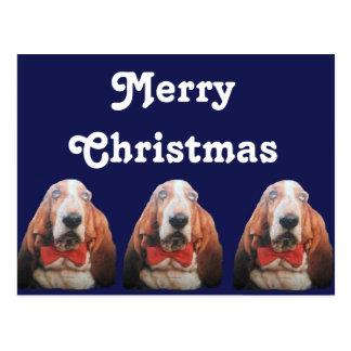 Cães de Basset do Feliz Natal do cartão Cartão Postal