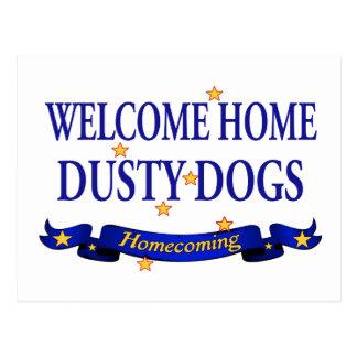 Cães empoeirados Home bem-vindos Cartão Postal