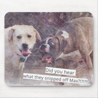 Cães engraçados arrepiantes para fora mouse pad