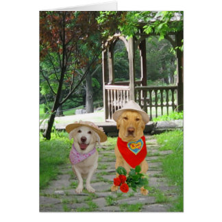 Cães engraçados customizáveis cartão