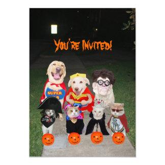 Cães & gatos engraçados o Dia das Bruxas Convite