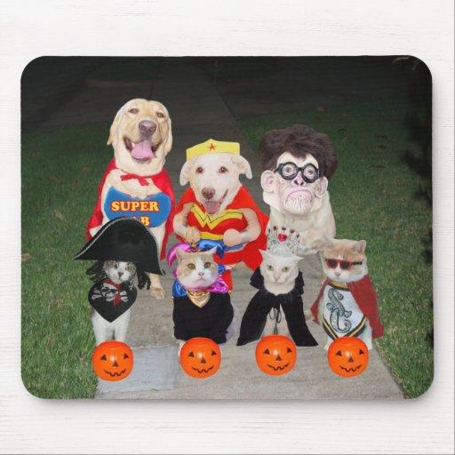 Cães & gatos engraçados o Dia das Bruxas Mousepads