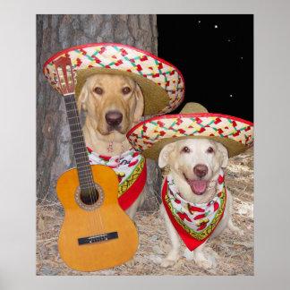 Cães/laboratórios engraçados no poster dos