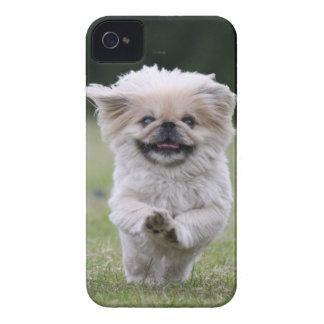 Caixa corajosa da amora-preta do cão de Pekingese, Capa Para iPhone
