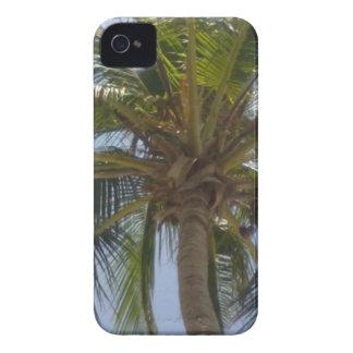 Caixa corajosa de Blackberry da palmeira Capas Para iPhone 4 Case-Mate