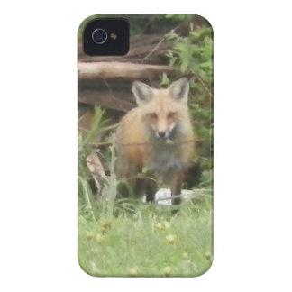 Caixa corajosa vermelha do Fox Blackberry Capa Para iPhone 4 Case-Mate