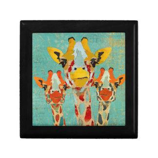 Caixa de presente espreitando de três girafas
