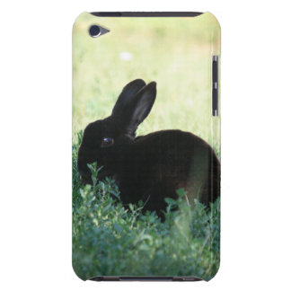 Caixa preta de iPod do coelho de Lil mal lá Capa Para iPod Touch