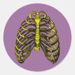 Caixa torácica humana da anatomia adesivos