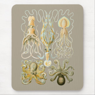 Calamares e Octopods Mouse Pad