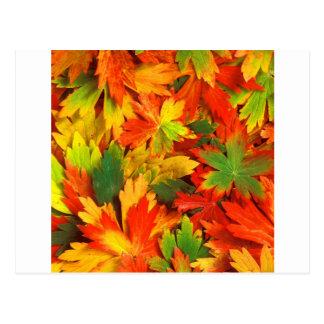 Caleidoscópio do outono de cartão postal