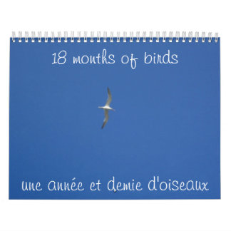 Calendário 18 meses dos pássaros