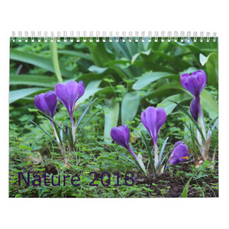Calendário 2018 da natureza