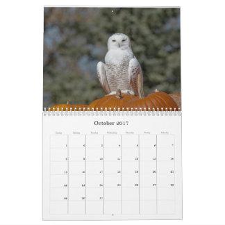 Calendário de parede da coruja de 2017