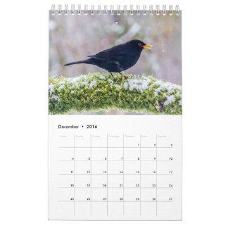 Calendário do pássaro de 2017 Ingleses