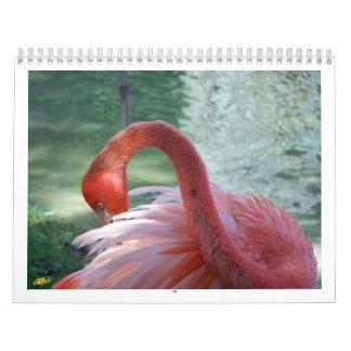 Calendário Pássaros