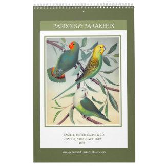 Calendário Pássaros do vintage - papagaios e Parakeets 2018