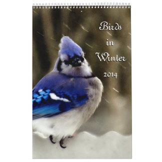 Calendário Pássaros no inverno