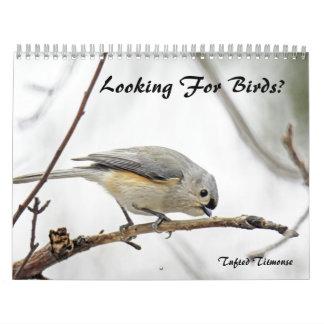 Calendário - procurando pássaros?