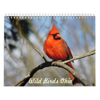 Calendário selvagem de Ohio dos pássaros