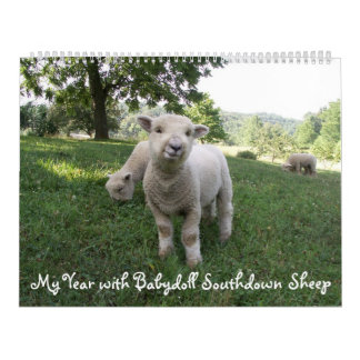 Calendário Southdown dos carneiros da boneca