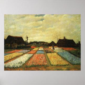 Camas de flor em Holland Posteres