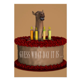 Camelo engraçado do feliz aniversario poster
