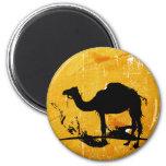 Camelo Ima De Geladeira