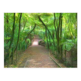 Caminhada da floresta cartão postal