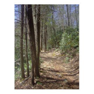 Caminhada da natureza cartão postal