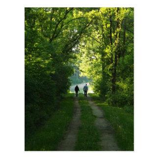 Caminhada da tarde cartao postal