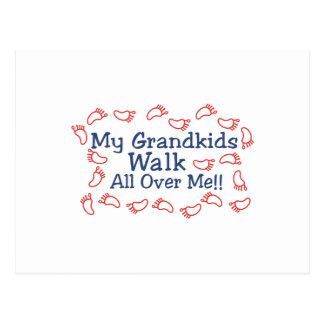Caminhada dos netos cartão postal