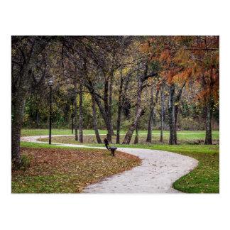 Caminhada no parque cartão postal
