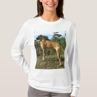 Camisa de great dane
