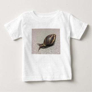 Camisa do caracol
