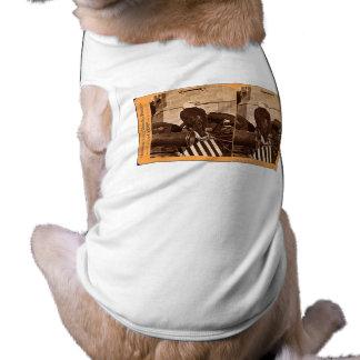 Camiseta Abe idoso, a águia Stereoview da guerra de Wiscons