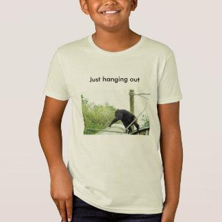 Camiseta adolescente, camisetas, engraçado, bonitos,