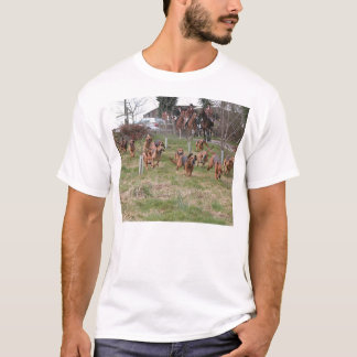 Camiseta bloodhounds working.png