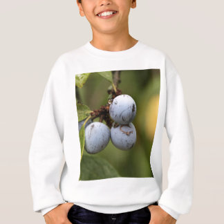 Camiseta Frutas da ameixoeira-brava