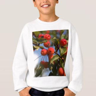 Camiseta Frutas de uma árvore de maçã selvagem
