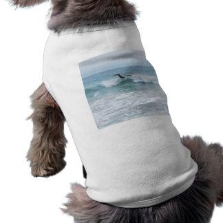 Camiseta Gaivota na praia em Califórnia