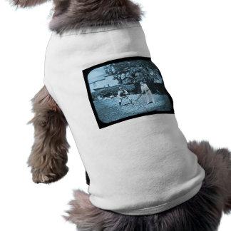 Camiseta Jogadores do grilo da corrediça de lanterna mágica