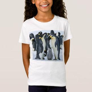 Camiseta Pinguins de imperador