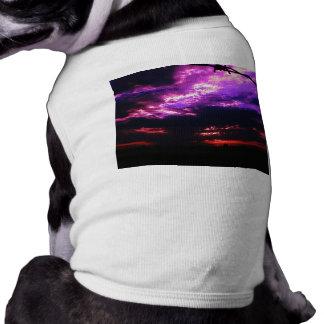 Camiseta Por do sol