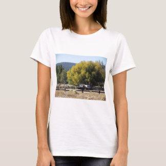 Camiseta Rancho na queda
