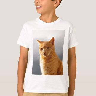 Camiseta Retrato de Merlin o gato do gengibre